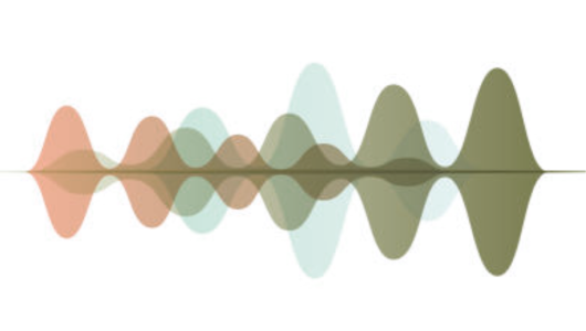 Voice Search Waveform